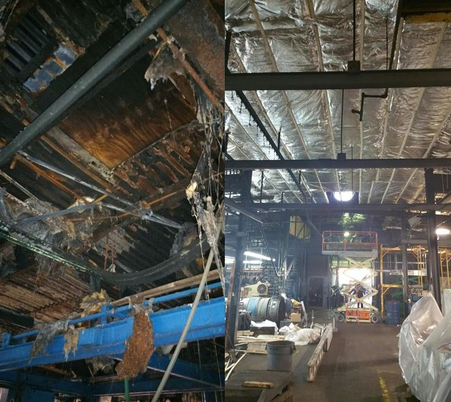 Before and after photo of cleanup