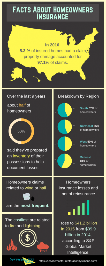 Facts About Homeowners Insurance Infographic