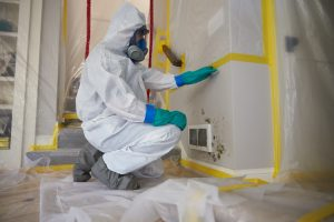 Mold Remediation Chicago - ServiceMaster Restoration By Simons