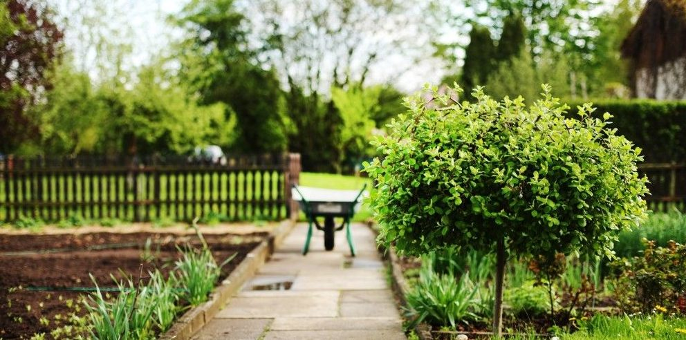 ServiceMaster Landscaping Tips for Business - ServiceMaster Restoration By Simons - Chicago