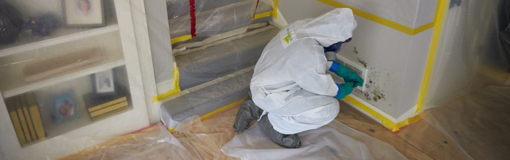 mold remediation Chicago - mold removal - mold cleanup - ServiceMaster Restoration By Simons