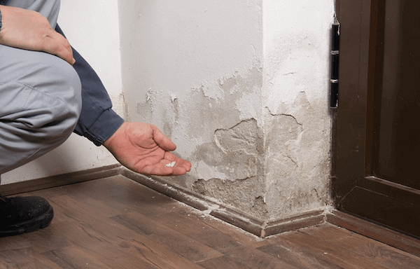 Thinking about ignoring water damage in your home? Here's what can happen if you do.